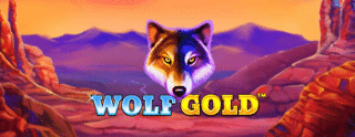 wolf-gold-slot