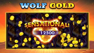 wolf-gold-wins