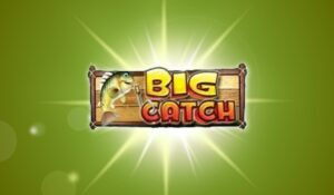 Read more about the article สล็อต BigCatch