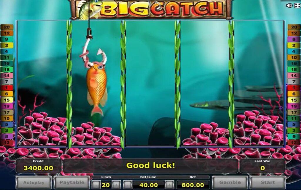 สล็อต BigCatch-gclub1688